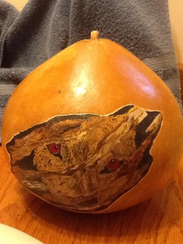Gourds_006